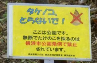 タケノコ採取禁止立て札.JPG
